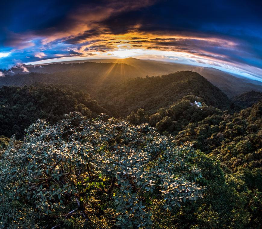 Darwins Voyage8 Ecuador Rondreis Vakantie Specialist