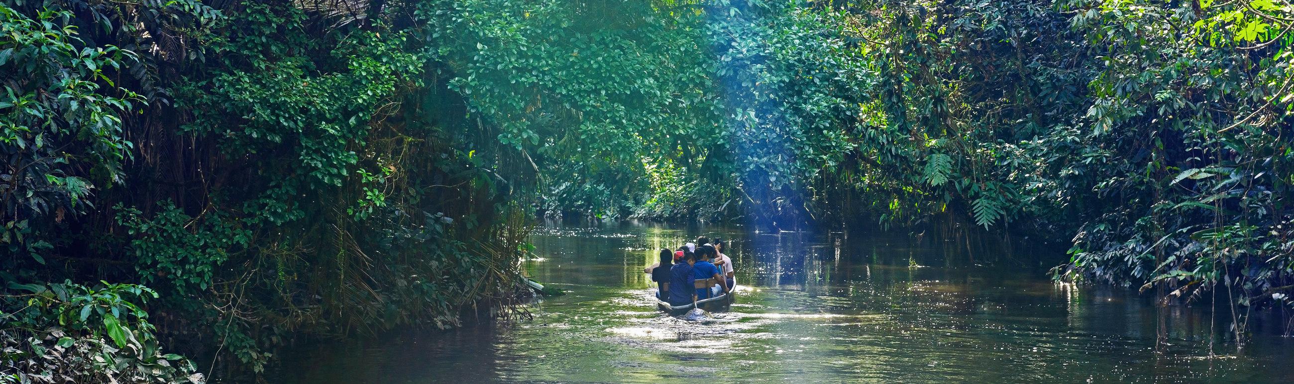 Pano Ecuador Reizen Amazone Yasuni Lodge Napo Wildlife Centre