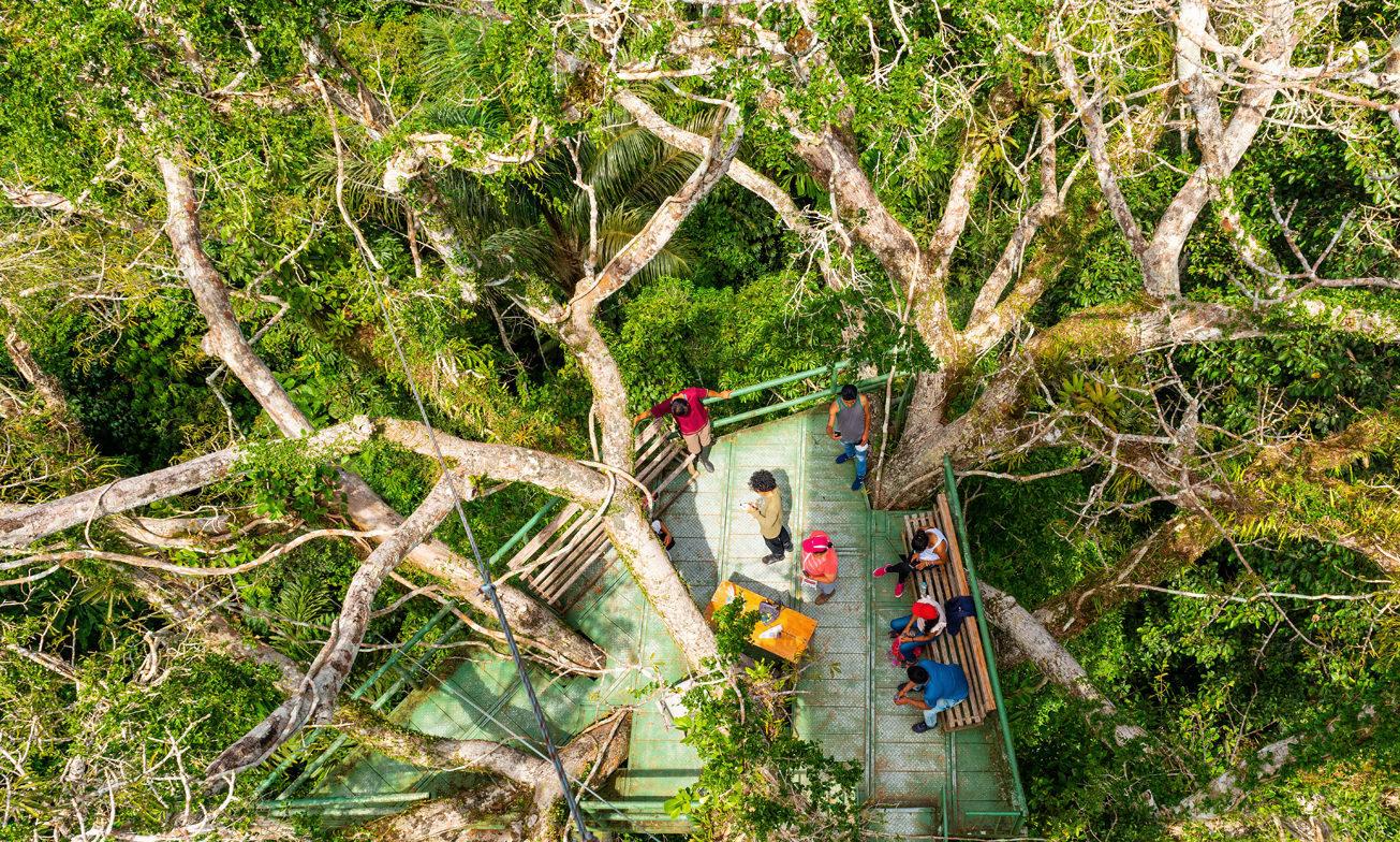 Ecuador Reizen Amazone Yasuni Lodge2