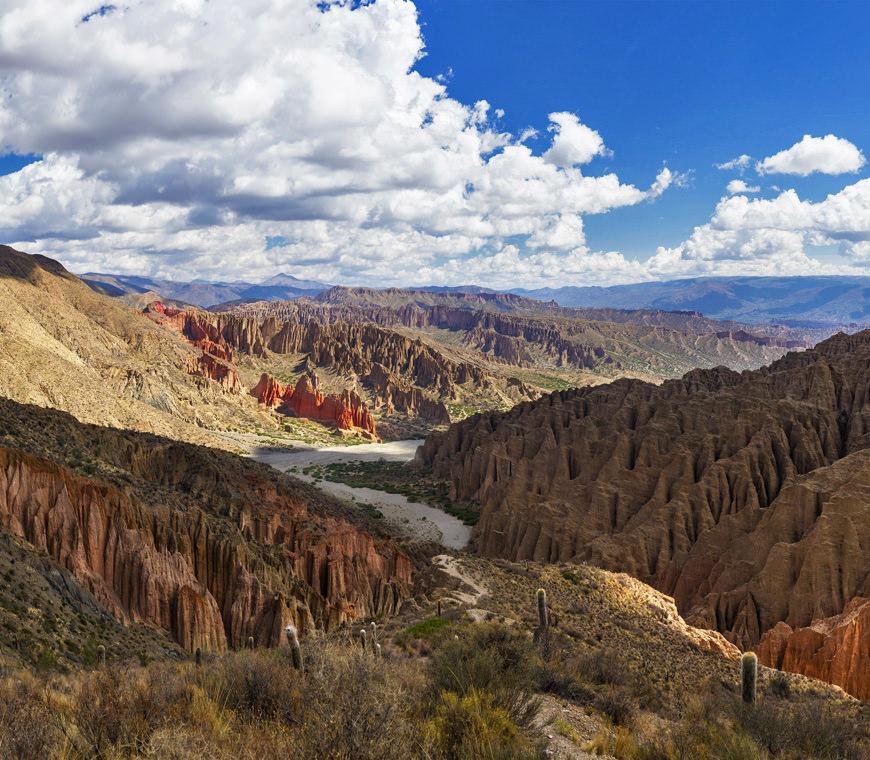 Atacama Bolivie Reizen Tupiza2