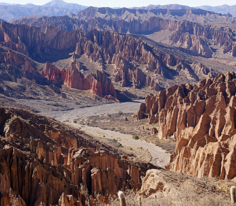 Atacama Bolivie Reizen Tupiza