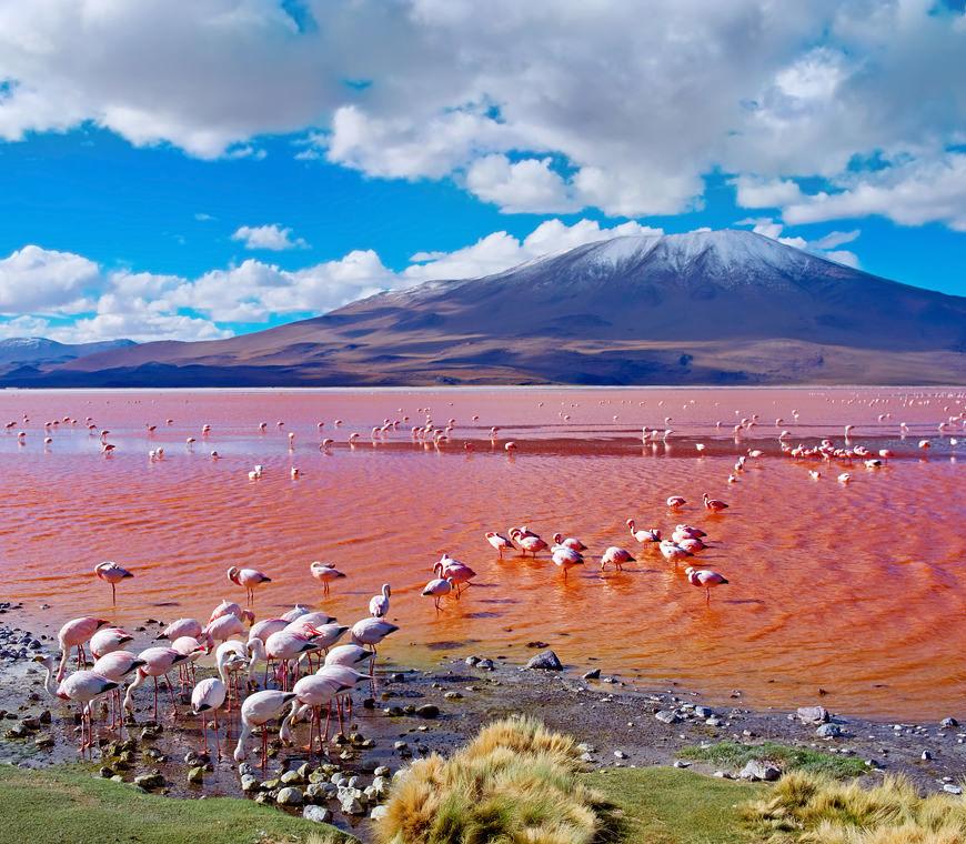 Bolivie Rondreizen