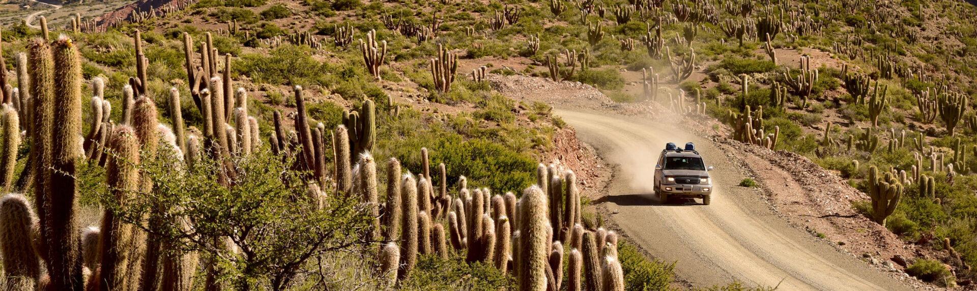 Bolivie Cordillera Lipez Uyuni3