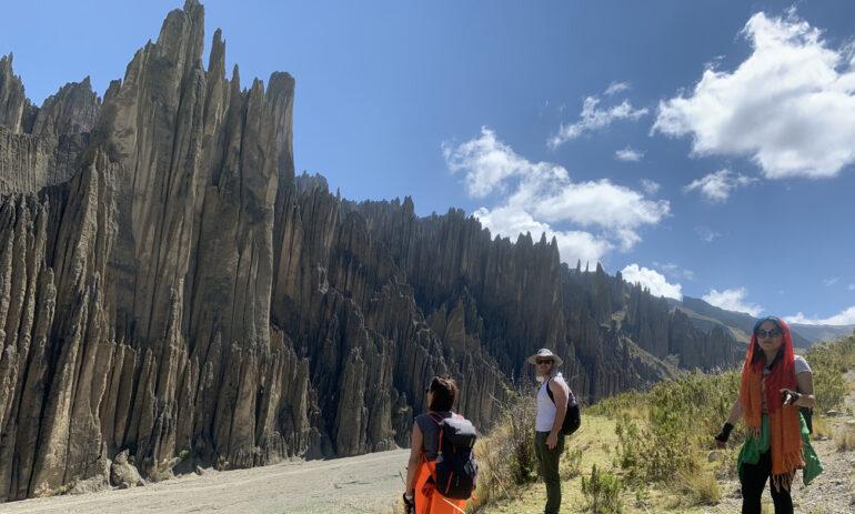 Palca2 Atacama Bolivie Reis