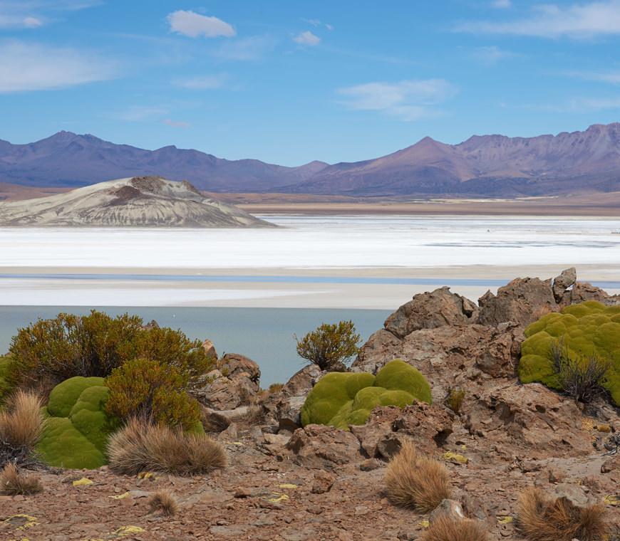 Chili Atacama Reizen Selfdrive Individuele Rondreis8