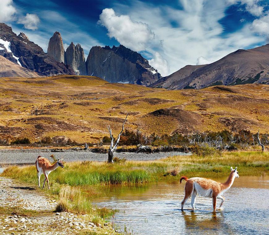 Chili Reizen Patagonie Atacama 2