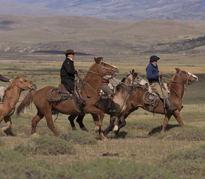 Chili Reizen Awasi2 Specialist Atacama Patagonia