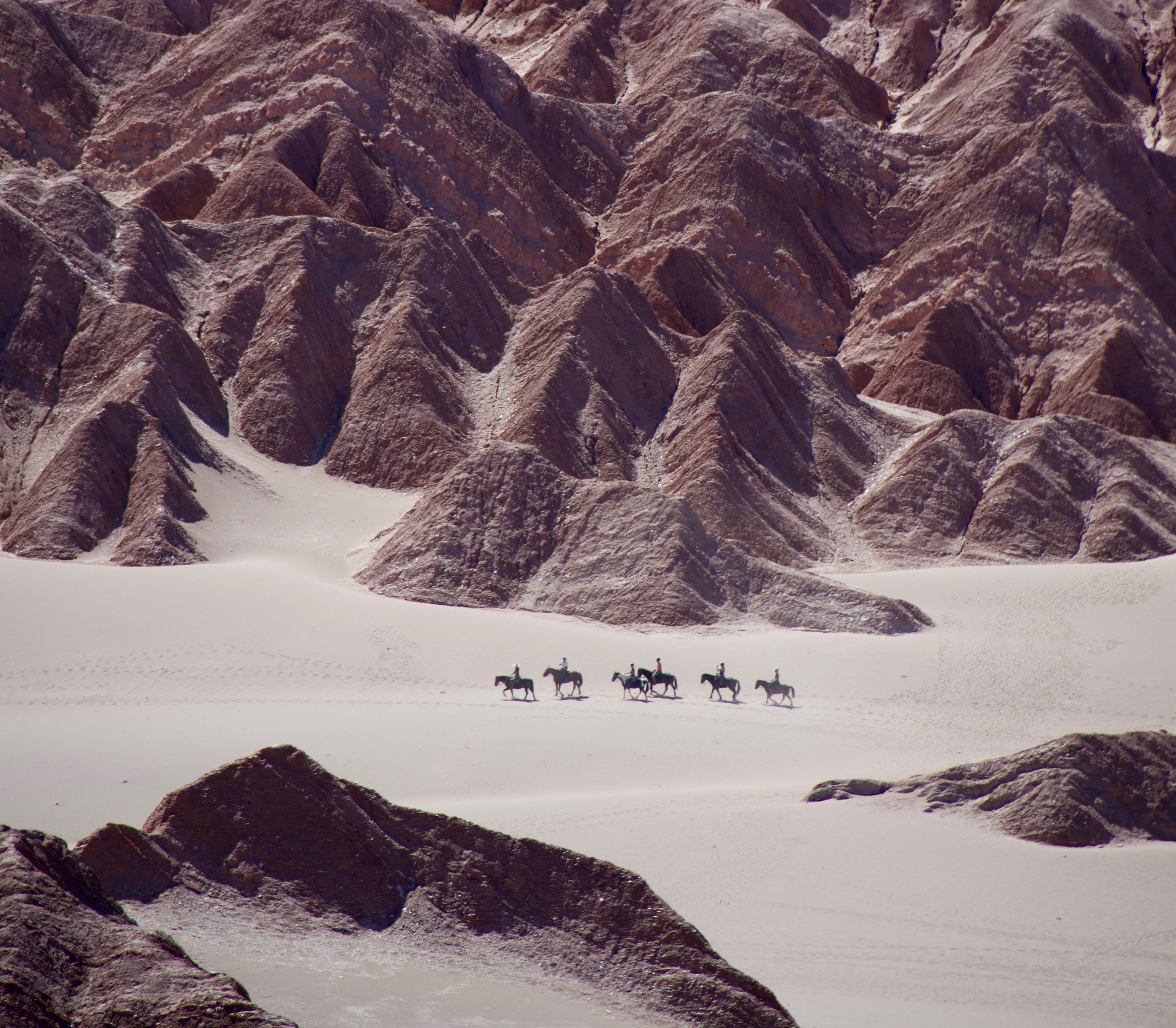 Demeyer Helen Atacamawoestijn Chili Reizen2