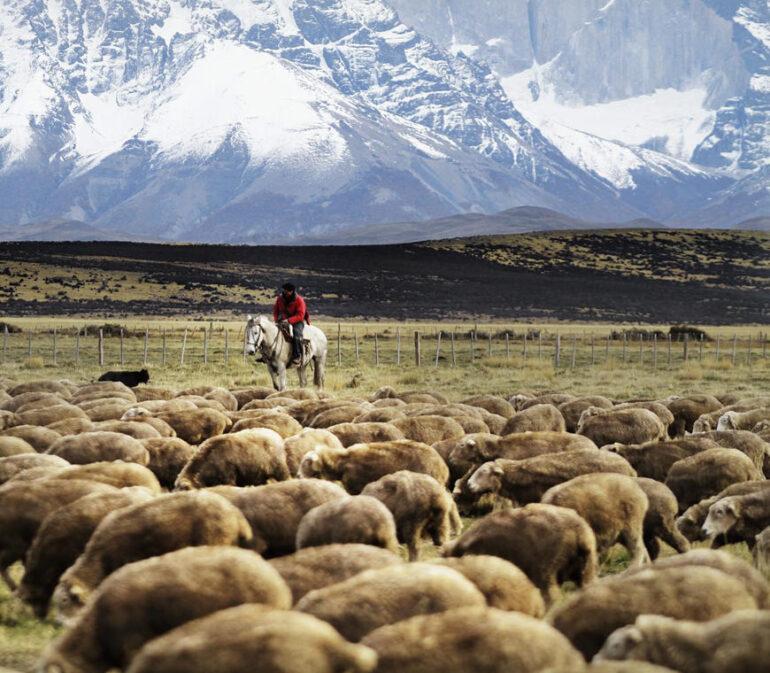 Atacama Patagonia Chili Luxe Reizen Matierra 09 Gaucho