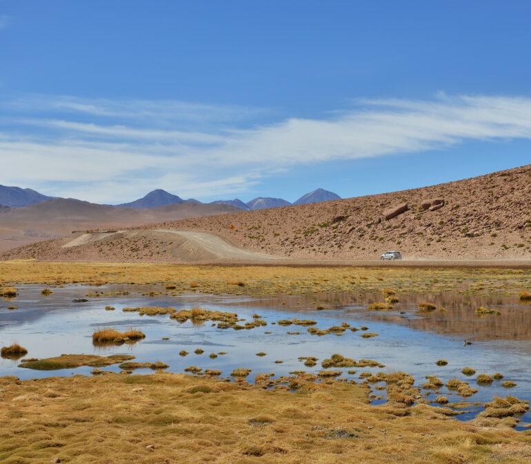 Demeyer Helen Atacamawoestijn Chili Reizen6
