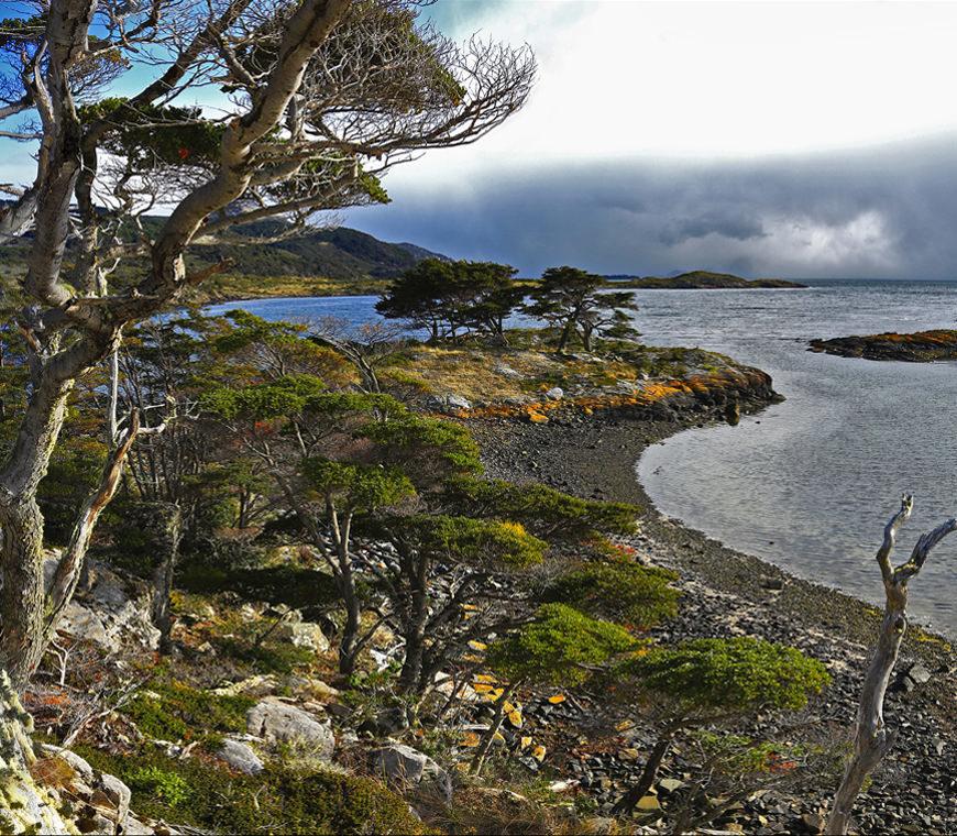 Australis Cruise Patagonia Atacama11