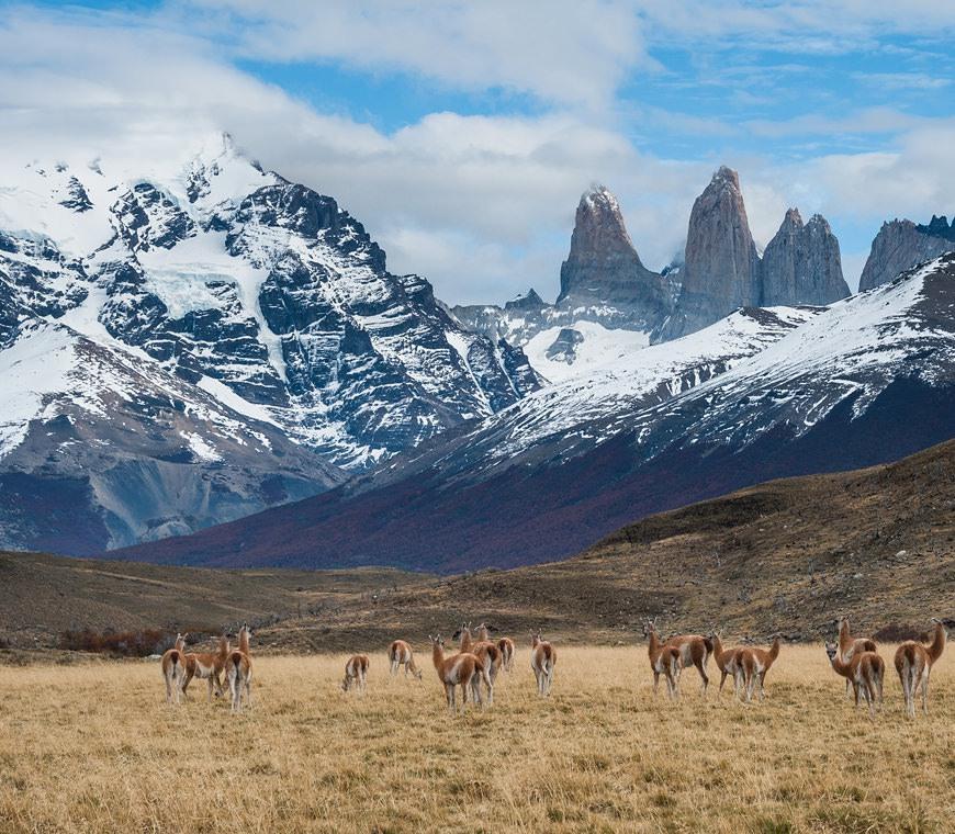 Chili Rondreizen Specialist Patagonie Atacama Paaseiland2