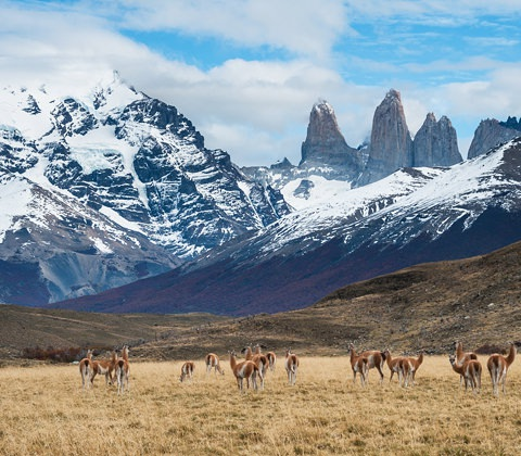 Chili Individueel Reizen Specialist Atacama Patagonie2