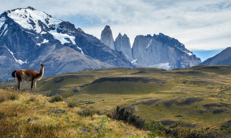 Chili2 Torres Del Paine Winter Atacama Be