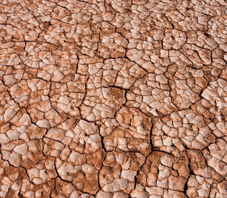 Argentina Puna Vierkant4 Atacama Be