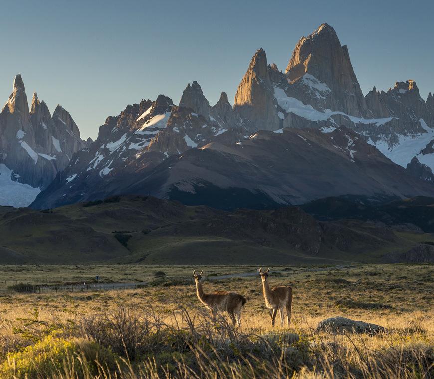 Atacama Individuele Reizen Patagonie Vakantie 17