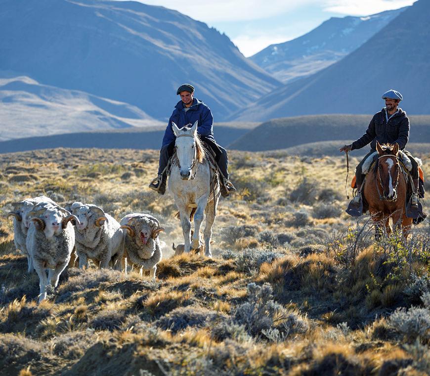 Atacama Individuele Reizen Patagonie Vakantie 22