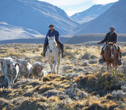 Argentinie Atacama Luxe Reis Tegel Gauchos