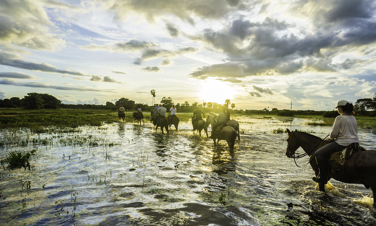 Esteros Ibera Wetlands Atacama Argentinie Reisspecialist